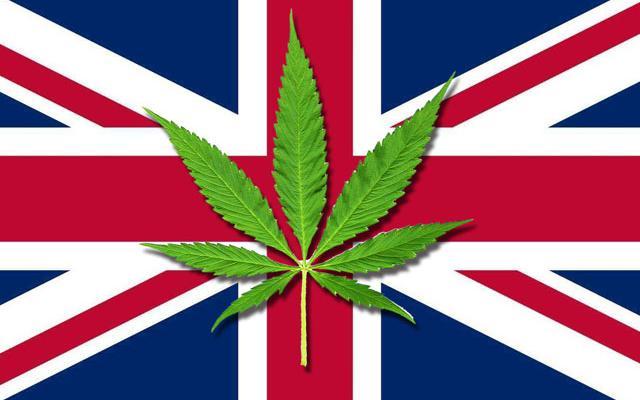 영국 대마 합법화